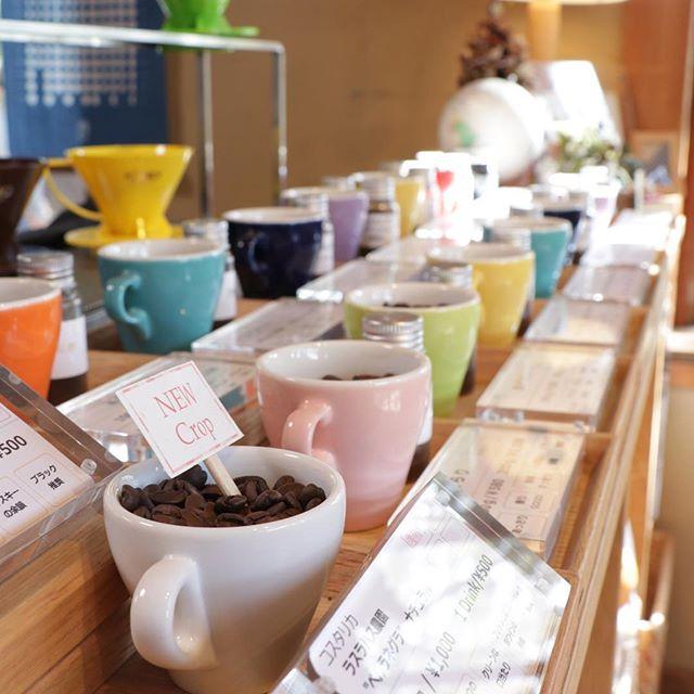 4週連続太山寺フェスかばくんカレーベーカリー レインツリー来週も行けるかな?? @taisanji_coffee #太山寺#太山寺珈琲焙煎室 #コーヒー#コーヒー好き#美味しいコーヒー#エチオピア