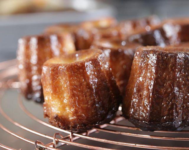 ミニミニカヌレ明日も持っていきまーす。バニラです。カヌレは チャイもあります。スコーンはチョコチップ、ほうじ茶とみかん、ホワイトチョコとみかん、真っ黒いスコーンシフォンケーキサンド生クリームチーズに笠木ファームさんのおいCベリーシフォンケーキは籠谷さんの高砂の夕日 @tamagono_omise_kagotani 醤油糀のフィナンシェたくさんあります。よろしくお願い申し上げます。#カヌレ#cannelé de Bordeaux#バニラカヌレ#カヌレ部#カヌレ好き#イベント情報 #ムサシ朝市#pieces焼き菓子#おやつ
