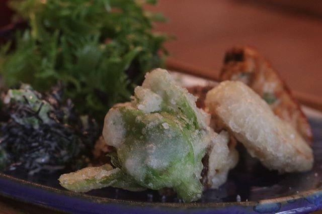 @784junctioncafe さん日曜日のお礼を兼ねて。フキノトウの天ぷら美味しかったー。#塩屋#784junctioncafe #古民家カフェ#塩屋ランチ #お昼ごはん#ランチ #美味しいごはん#素敵な器#ありがとうございました