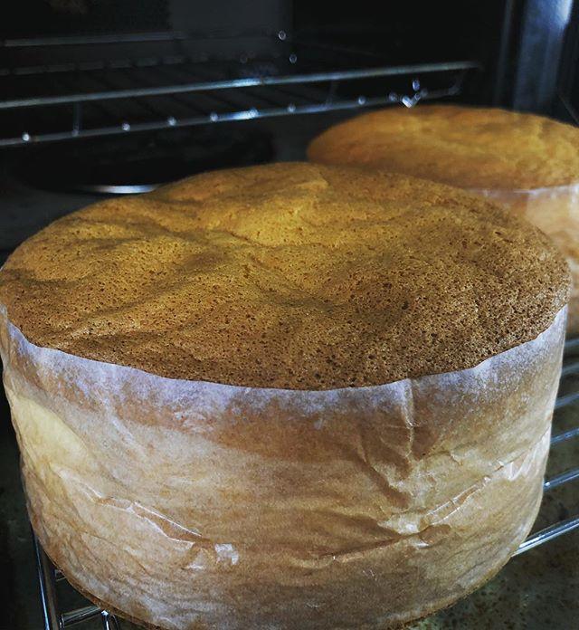 ジェノワーズ焼けました 厨房中いい香りーっっ。先日、尊敬する大先輩方に大人の遠足に誘われてまだ何にも決まってないけど今からワクワク♡ おともします。#ジェノワーズ#スポンジケーキ #デコレーションケーキ#苺のショートケーキ#ショートケーキ#焼き菓子販売 #オーダー焼き菓子#ありがとうございます