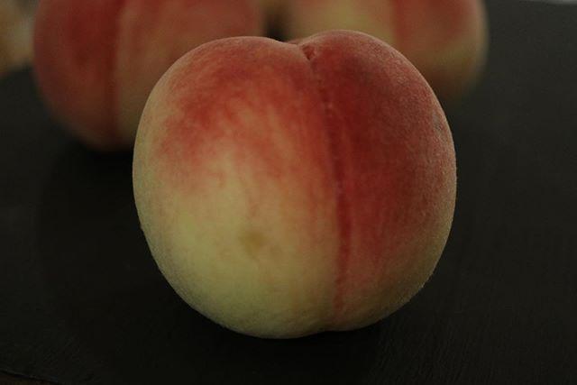 和歌山から桃が届きました瓶入りチーズケーキにたっぷりの桃ソースを詰めて和歌山シュシュマーケットに持って行きます。瓶入りチーズケーキパインマンゴー桃すももオレンジ5種類の予定です。よろしくお願い申し上げます。#ジャム #瓶入りチーズケーキ #ジャム作り #ジャム部2019#ジャム部#焼き菓子屋#pieces焼き菓子#和歌山の桃 #桃#桃ジャム#桃の#季節のフルーツ #チーズケーキ#おやつや