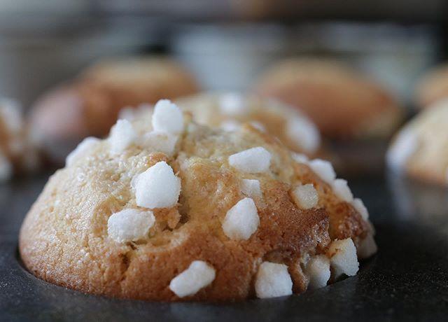 桃とクリームチーズのマフィンワッフルシュガーが可愛い️ なんだこれ、可愛いすぎるー明日は#ドキドキワクワク体験ブルメール舞多聞 1階両日 10:00〜夏休み親子で楽しめるイベントです!ぜひお立ち寄りくださいませ。久しぶりにマフィンをたくさんお出しします!muffin全粒粉入りプレーン桃とクリームチーズ沖縄県産 島バナナとチョコチップ醤油糀入りそのほかのメニューは前のポストでご確認下さい!垂水での出店参加はあまりないので、たくさんのお客サマにお会いできることを楽しみにしています!2日間よろしくお願い申し上げます。瓶入りチーズケーキは8/2にお出しします。#シフォンケーキ#ベーキングパウダー不使用#卵の力#北坂養鶏場#淡路島#美味しい卵#焼き菓子屋#おやつや#pieces焼き菓子 #ほろほろスコーン #マフィン#キッズイベント#夏休み#夏休みws #垂水 #ブルメール舞多聞#商業施設