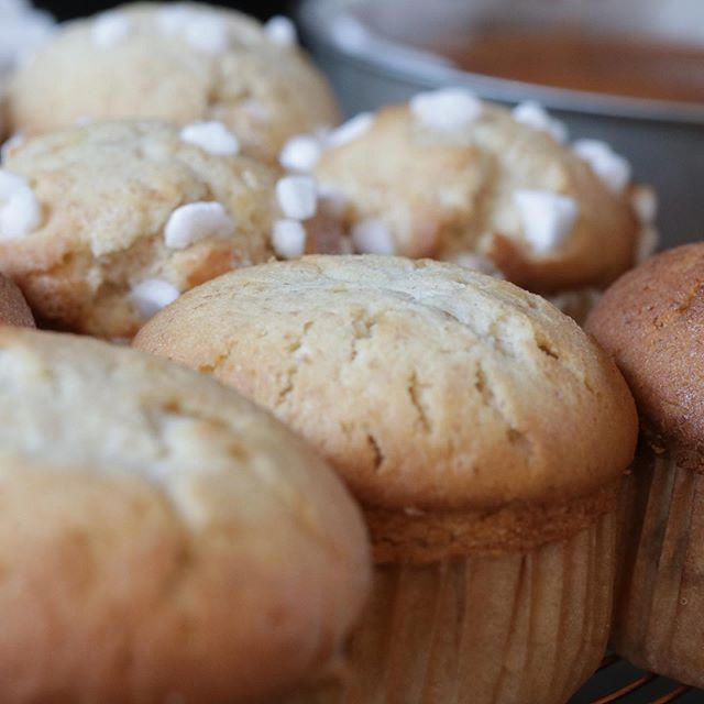 本日、朝からたくさんのお客様におこしくださりありがとうございました!piecesは、12:30で撤収させて頂きまたら明日10:00〜お待ちしております。#焼き菓子屋#pieces焼き菓子#マフィン #手作りマフィン#全粒粉入り#大山こむぎ#美味しいマフィン明日は、チーズケーキマフィン、瓶入りチーズケーキをお持ちします!