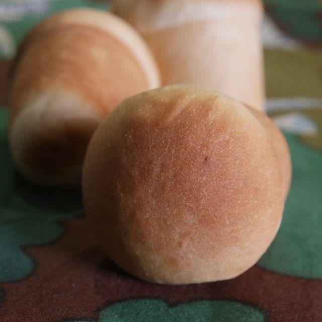 明日の焼き菓子屋が焼くクリームパン限定20個です。ほろほろスコーンに新作が登場!!tutumuシリーズ黒イチジク(佐賀県産)とクリームチーズ紫芋餡とクリームチーズの2種類をご用意しました。tutumuとは折り紙のように四隅を織り上げフィリングを包み込むように焼き上げたスコーンです!ぜひ♡#神戸市西区#かすがプラザ#イベント出店#イベント#tubamemarche #pieces焼き菓子#pieces#シフォンケーキ #チーズケーキ#ほろほろスコーン#スコーン#焼き菓子屋が焼くクリームパン