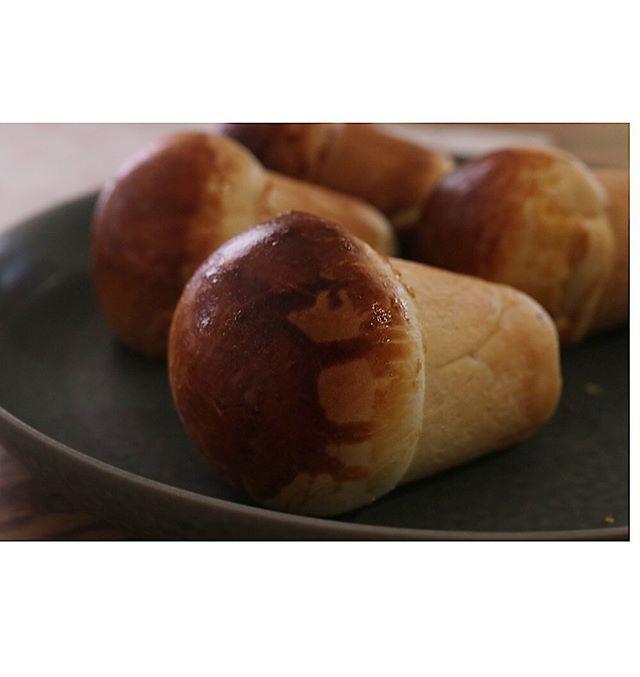 焼き菓子屋が焼くクリームパンカタチはコレに決めたあとはドリュールを決める。何も塗らないかもしれない。#pieces焼き菓子#焼き菓子屋#神戸市西区#玉津#焼き菓子販売#北坂養鶏場#卵#淡路島 #カスタードクリーム#カスタード#クリームパン #焼き菓子屋が焼く#パンシリーズ #キノコ型 #キノコ型のスイートポテトパイも販売予定です。ただいま絶賛試作中!お楽しみに。9/14土曜日ロハスパーク赤穂でお待ちしてます。