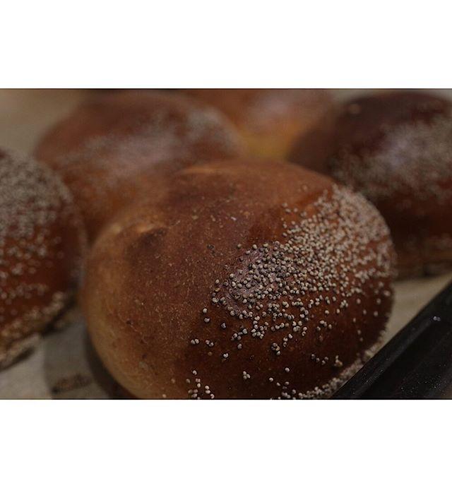 ライ麦粉入り渋皮栗あんぱん抹茶と渋皮栗のケーキ好評でした。ありがとうございましたー。#イベント#tubamemarche #pieces焼き菓子#焼き菓子屋#焼き菓子販売#シフォンケーキ #スコーン#チーズケーキ#焼き菓子屋が焼くパン#ほろほろスコーン