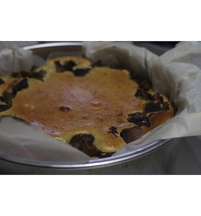 昨日の新メニューはレモンケーキ🍋の他に無農薬栽培 ほうじ茶を使った渋皮煮のチーズケーキでした。ハロウィン限定かぼちゃのチーズタルトも好評でした。ありがとうございました。さて10/8 火曜日@taisanji_coffee さんにて販売会  再開させて頂きます!10:00〜売り切れまで。#シフォンケーキ #太山寺珈琲 #太山寺珈琲焙煎室#シフォンケーキ作り #pieces焼き菓子#piecesの#焼き菓子販売#ふわふわシフォン#口溶けシフォン#ベーキングパウダー不使用#卵の力