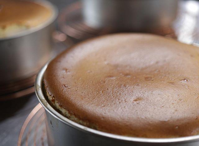 明石ロハスミーツ初日は風が強く時より雨が降ったりで️お天気に恵まれませんでしたがリピーターのお客様にたくさん来て頂きなんとか乗り切ることができました。帰ってすぐに明日の仕込みチーズケーキを4種類プレーン抹茶と栗ほうじ茶と栗ブルーベリーレモンケーキ🍋シフォンケーキを5種類明日も10:00〜17:00までお待ちしております。よろしくお願い申し上げます。#明石ロハスミーツ#ロハスミーツ#明石ロハス#ロハス#pieces焼き菓子#焼き菓子販売#シフォンケーキ #チーズケーキと#明石#ほろほろスコーン#スコーン#チーズ系 #チーズケーキ#カヌレ