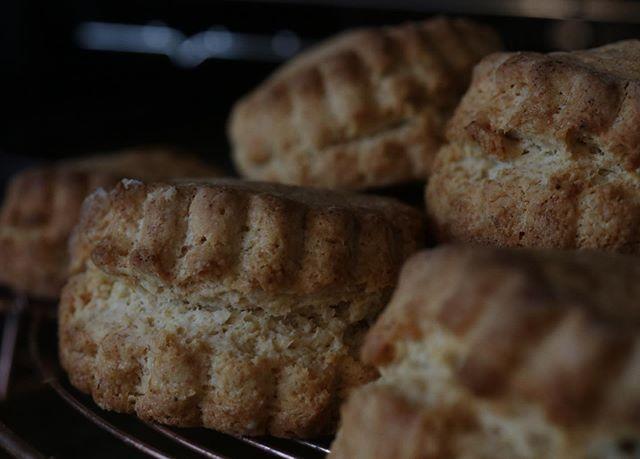 11/20 水曜日@cafe.clotho さんをお借りしまんぷく食堂 vol.2 の開催あさってですよー。この日しか、ここでしか味わえない、4人の想いのこもったお料理、お菓子、パンをぜひ味わいに来てくださいね️(写真は前回の様子です).おいしいもの、食べること、作ること、農家さんが大好きな4人が集まって開催する、一日だけのカフェ。・「こころもからだもおなかいっぱいになってほしい」とい想いをこめて、おいしいお料理と、お菓子、パンをご用意してお待ちしております。お菓子、パンの販売もございます。・当店はシフォンケーキ 8種プレーンチョコチップコーヒーとホワイトチョコ黒糖ほうじ茶しましま 麻炭しましま ココアしましま コーヒーブラウニーとチーズケーキベイクドチーズケーキ全粒粉入りほろほろスコーン以上となります。お取り置きをご希望のお客様はinstagram→DMLINEをご存知の方はそちらへもしくは️pieces.chiffon@gmail.comお願い致します🤲すでにお受けできない商品もございますが、気になる物がございましたらお気軽にお問い合わせ下さいませ! 【開催日時】2019年11月20日(水)11:00〜15:30 ●ランチプレート●要予約1300円(税込)料理担当、加藤加代子が作る、重ね煮のランチプレート。めっちゃおいしくて、からだが喜びます!クロトさんの飲みもの付きです。.●ランチのお申込み私のDMまたは、ご存知の方は、私、他下記の担当の3人ならだれでも結構ですので、直接メール、LINEで直接お申込みください。Facebookのイベントページ、「まんぷく食堂vol.2」で検索していただき、そちらからでもお申込みいただけます。 .️メンバー【お料理担当】●加藤加代子DANDELION☆みどり文庫 パンと本と畑のある暮らし@kauoko_kato ..【お菓子担当】販売●奥村尚子焼き菓子とコーヒーのお店 Pieces@pieces_cookie .【パン担当】販売●馬島和代小さなパン屋さんnagonagopan @nagonago_pan ..【パン担当】販売●宮西裕美子天然酵母パン教室CO•ANNこ•あん@renryo88.【出店者】販売 .●龍まき寿し地元の米、大麦など材料、そして調味料すべてにこだわり丁寧に作られた慈味あふれるお寿司です。@龍まき寿し・開催場所 @cafe.clotho 神戸市中央区下山手通3-6-4・交通 JP、阪神元町駅より北へ徒歩3分お車の方は近くに駐車場がございます(1日1200〜1500円)。 #まんぷく食堂#元町#1日カフェ#重ね煮料理#ランチプレート#pieces焼き菓子のお店#シフォン#スコーン#チーズケーキ #ふわふわシフォン#レモンケーキ #焼き菓子屋#焼き菓子販売