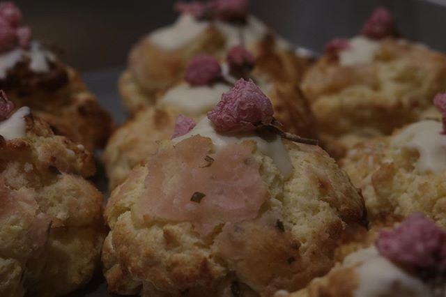 おはようございます。今日から新学期がスタート冬休みはあっという間さて写真は去年人気だった池田製餡所さんの桜餡を使ったクリームチーズと合わせたほろほろスコーン2月末より販売スタートします。お知らせの通り新年初イベントは@634asaichi ムサシ朝市ウェルネスパーク9:00〜15:00お待ちしております。メニューはシフォンケーキプレーンチョコチップコーヒーとホワイトチョコほうじ茶とホワイトチョコしましま🦓ココアしましま🦓抹茶瓶入りチーズケーキ🧀プレーングレープフルーツテリーヌ風チーズケーキ抹茶と黒豆のベイクドチーズケーキクッキーボトル以上です。よろしくお願い申し上げます。#スコーン#ほろほろスコーン#シフォンケーキ#チーズケーキ#テリーヌ風チーズケーキ#pieces焼き菓子#pieces#イベント出店#ムサシ朝市#焼き菓子販売#個人店舗#実店舗無し#今年も宜しくお願い致します🤲シフォンケーキホールのご予約今年に入ってから何件か頂いております。シフォンケーキ20㌢ 箱代込み 2400円ナッペ有り箱代込み 2900円ご予約承ります。
