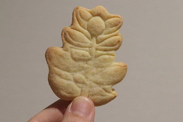 2020/02/02エクラ雑貨市いよいよあさってです。メニューは前ポストをご覧くださいませ!今日は納品するクッキーとショコラチーズケーキ、ガトーショコラを焼成。@ruban_shop さんへ全粒粉入りサブレキラキラシュガークッキー黒糖サブレスノーボールクッキーを少量ずつ納品させて頂きます。よろしくお願い申し上げます。有難い事に少しずつではありますが、起業様からのオーダーや委託先、個人オーダーを頂いております。そしてそして素敵な場所でのイベント出店のお誘いも!3/7です。詳細は追ってお知らせしますー。ありがとうございます!ありんこみたいなスピードですが…1歩、1歩前進しております。引き続きよろしくお願いします🤲#エクラ雑貨市#小野市#クッキー作り #ミニクッキー #クッキー缶 #クッキーボトル#ジャム#甘さ控えめ#シフォンケーキ#スコーン #チーズケーキ#ショコラチーズケーキ #テリーヌ#ショコラテリーヌ #イベント情報2/2 エクラ雑貨市小野市2/8 eat local kobeファーマーズマーケット 東遊園地2/9 パンとお菓子のフェスティバル高砂総合運動公園2/11 パンとお菓子のフェスティバルメッセ三木雑貨市と同時開催2/14〜16@anonyme_s_s 大阪 南船場2/29 eat local kobeファーマーズマーケット 東遊園地3/7 姫路3/14 eat local kobeファーマーズマーケット 東遊園地3/20 和歌山シュシュマーケットビッグホエール3/21 小麦サミット姫路 大塩3/22 パンとお菓子のフェスティバル三田 有馬富士