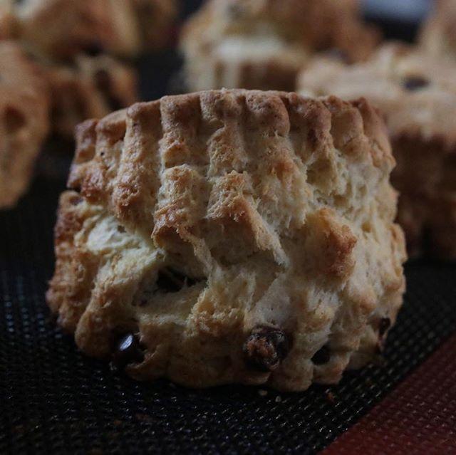 4/22 水曜日ハナサクプラスさん間借り販売日スコーン追加します。チョコチップせとかホワイトチョコ(アールグレイ)なめらかプリンプレ販売します。限定 20よろしくお願い申し上げます。#pieces焼き菓子屋#pieces#焼き菓子販売#焼き菓子屋さん#シフォンケーキ#スコーン #チーズケーキ #クッキー #cookies#イベント販売#イベント出店 #店舗なし#神戸市西区#玉津インターすぐ#ご予約承ります#よろしくお願いします#瓶入りチーズケーキ#瓶入り #ジャムを食べるための#チーズケーキ #カスタードプリン#なめらかプリン#プリン #プリン #お家プリン