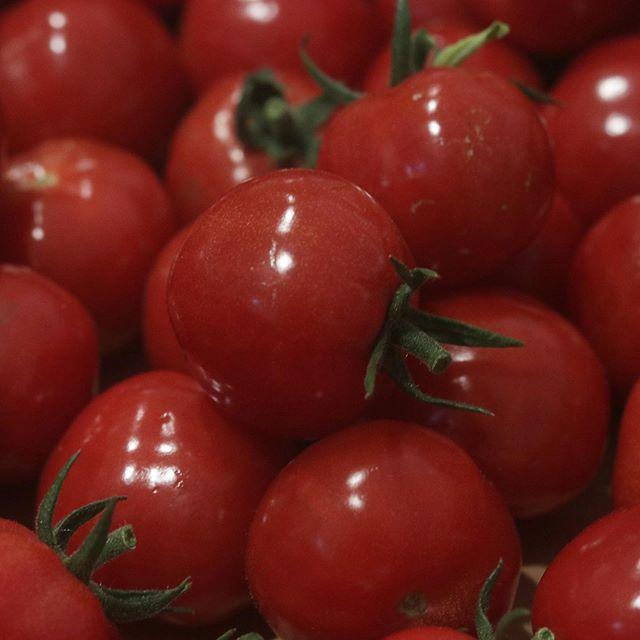 @kazuhiro.tanaka70 田中さんとこへトマトを買いに行ってきました。農家さんの収穫なみのハイスピードで4.5㌔収穫しました。今日も艶ピカで甘いっっ。末っ子はミニトマトをブドウのようにパクパクすごい勢いで食べるから、先にドライトマト用を確保、、、 @motoakiyasufuku さんとこでもぎたてスイートコーンをかぶりつき、水分補給立派なピーマンは、ピーマンの肉詰めに。ピーマンが苦手な子供たちも安福さんのピーマンは、もりもり食べてくれます。ミニきゅうり取り放題付きwwwピクルス作ります。お忙しい中お時間頂きありがとうございましたまた、よろしくお願いします。#農家さん#生産者さん #顔が見える野菜 #ありがたい#野菜 #夏野菜#ミニトマト #とうもろこし#カラーピーマン #きゅうり#西区岩岡次回pieces出店は6/11 土曜日eat local kobe ファーマーズマーケット9:00〜12:306/18 土曜日ムサシ朝市ウェルネスパーク7:00〜13:006/25 土曜日eat local kobe ファーマーズマーケット9:00〜12:30#クッキー #pieces #焼き菓子 #焼き菓子販売#サブレブルトン #シフォンケーキ#神戸市西区#おやつ#クッキー缶 #通販 #BASE#ほろほろスコーン#野菜のシフォンケーキ